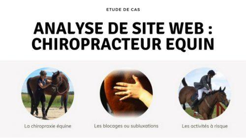 Analyse de site web : Chiropracteur équin